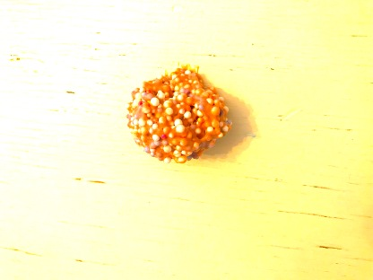 Fuzzy Apricot Slime